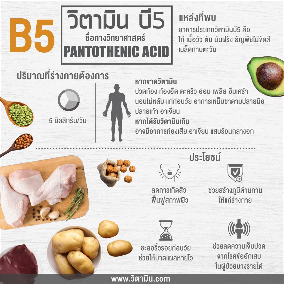 Vitamin-B5-info